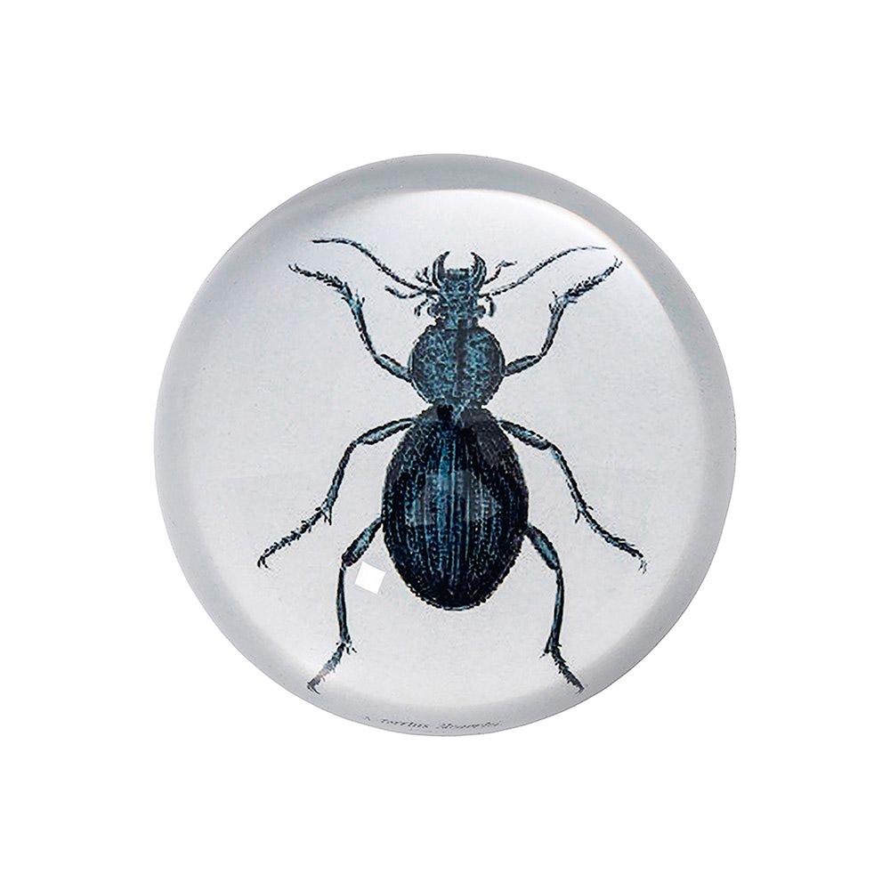 Briefbeschwerer Käfer